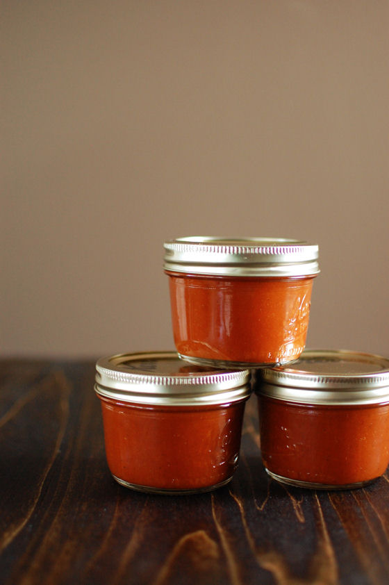 Homemade Curry Spiced Ketchup