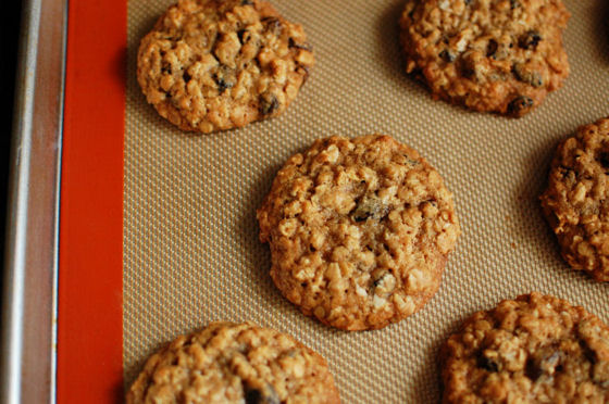 Gourmet chewy oatmeal cookie recipe